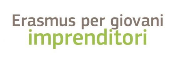 Erasmus per GI logo