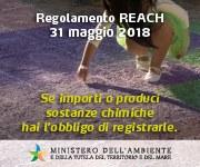 scadenza REACH