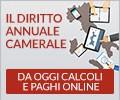 sito tematico diritto annuale